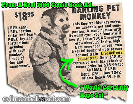 monkeyad